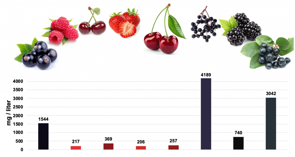 anthocyanin content of fruits elderberry