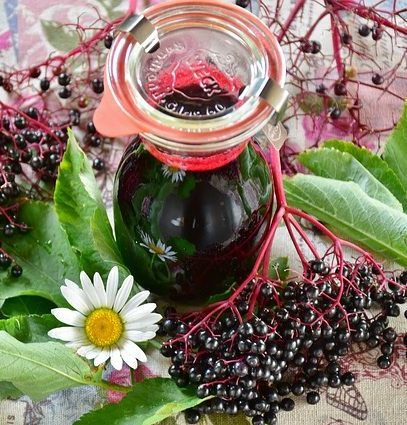 bodzalekvár elderberry jam