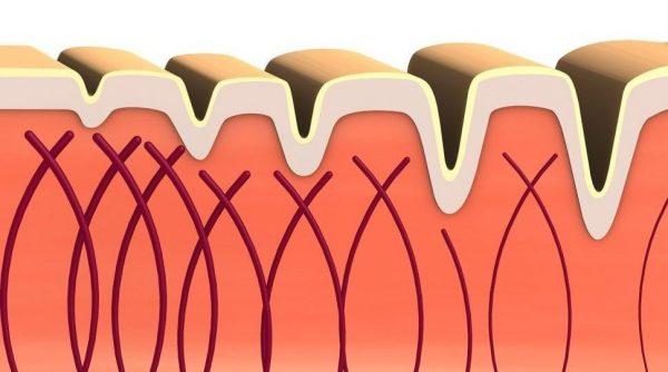 bőröregedés kollagén